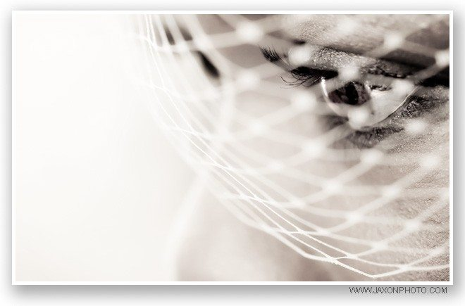 Sepia portrait of the bride eyes behind her birdcage veil