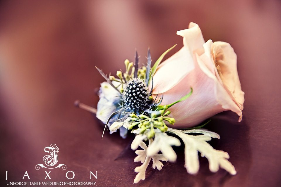 single pink rose, dusty miller leaves and blue thistle