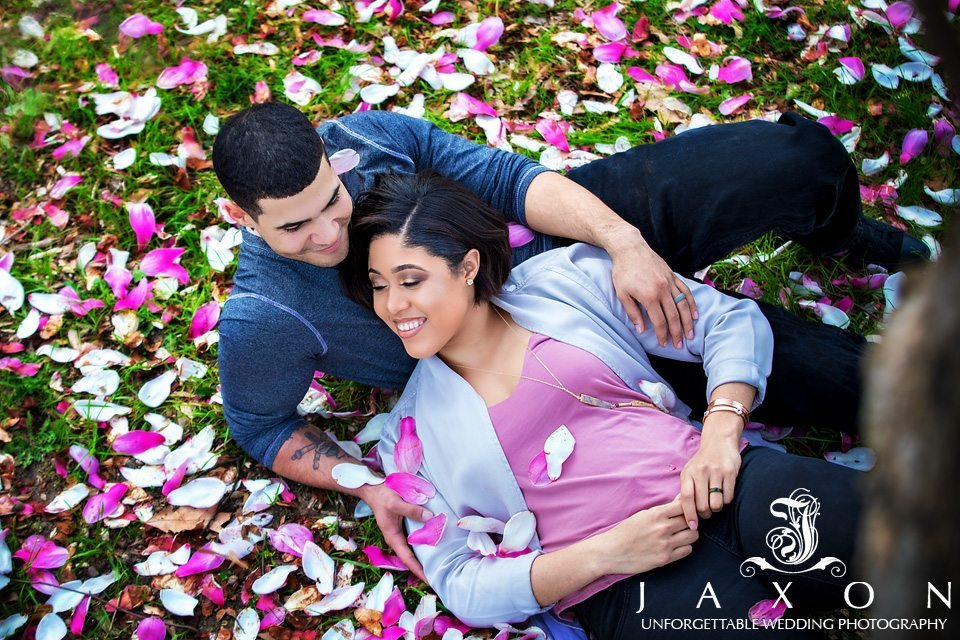 Couple on the grass surrounded by the brilliant goblet like blooms of the Tulip magnolia tree